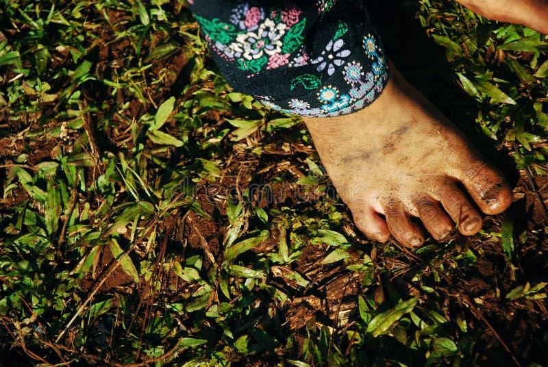 北部泰国:脚肮脏的特写镜头 库存图片