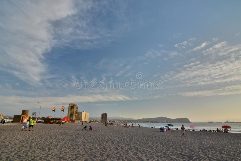 北部的海滩 阿里卡 智利 免版税图库摄影