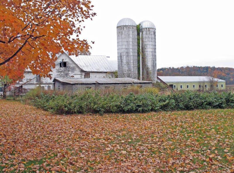 北部秋天的NY农场 图库摄影