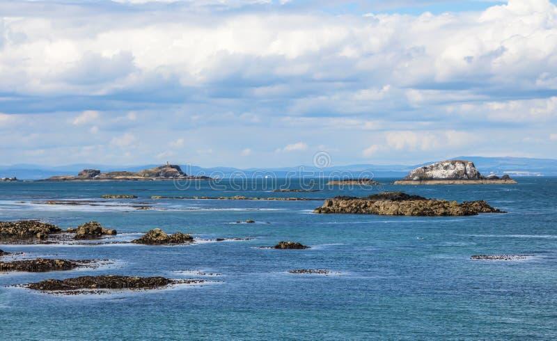 北部贝里克,东洛锡安,大众湾的南岸的,苏格兰 免版税库存图片