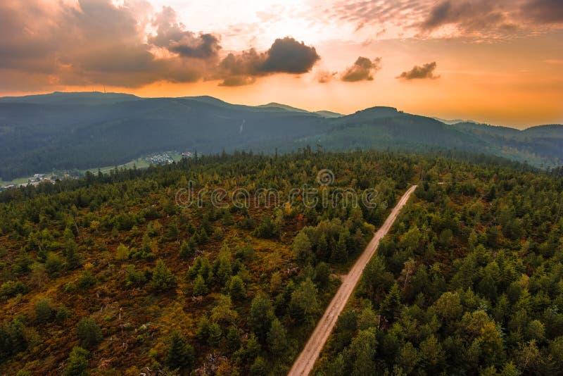 北黑森林 库存图片