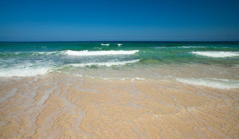 北费埃特文图拉岛, Grandes playas 图库摄影