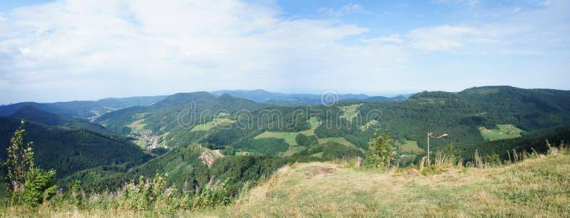 北黑森林在德国 库存图片