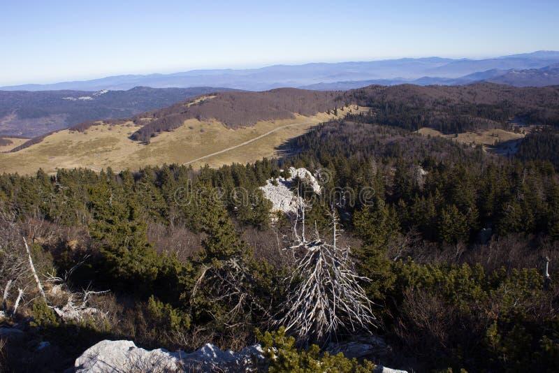 北Velebit风景 库存照片