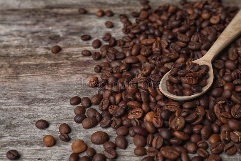 匙子和咖啡豆 库存图片