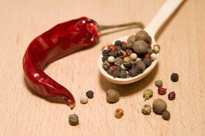 匙子用胡椒和辣椒五谷填装了 库存图片