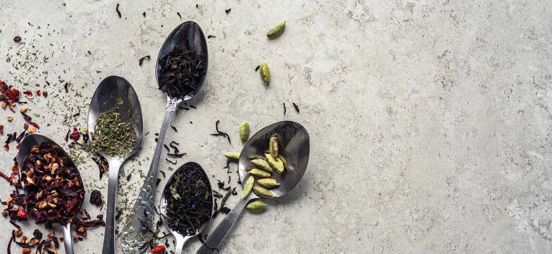 匙子用茶叶,在桌,横幅上的干玫瑰色花草本豆蔻果实 免版税图库摄影