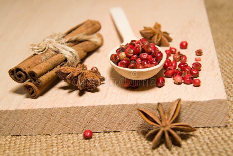 匙子,胡椒、桂香和星美洲黑杜鹃五谷在一朵木海浪的 免版税图库摄影