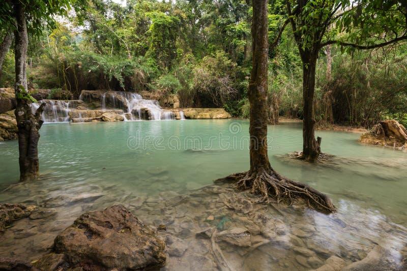 匡Si瀑布在老挝 免版税图库摄影
