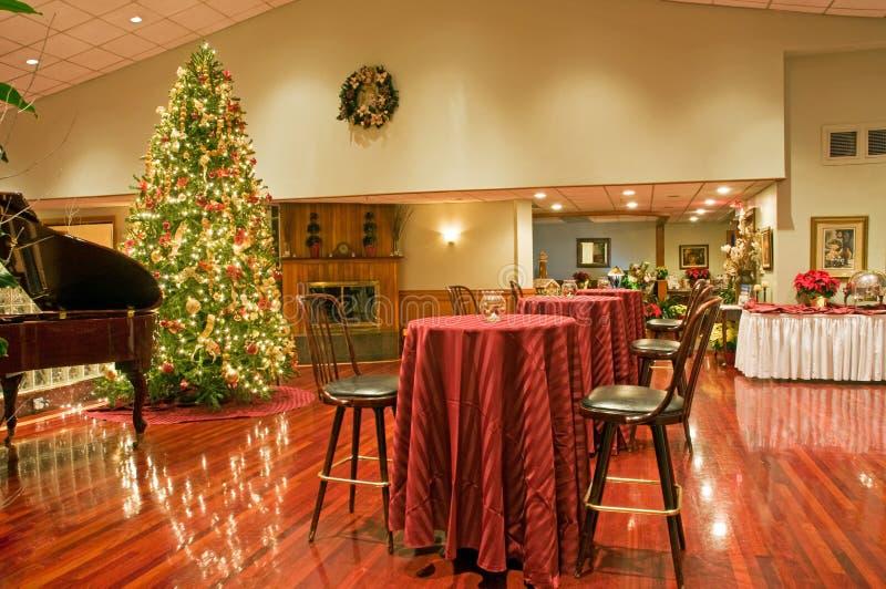 区圣诞晚会结构树 库存图片