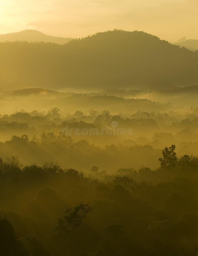 区多小山有薄雾 库存图片