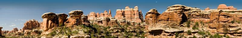 区canyonlands针全景犹他 免版税库存照片
