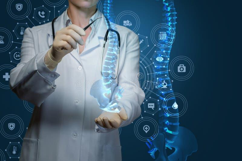 医学的工作者对待人的脊椎 库存照片