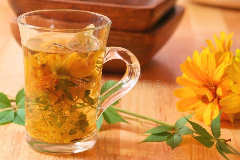 医治用的清凉茶时间冬天 免版税库存图片