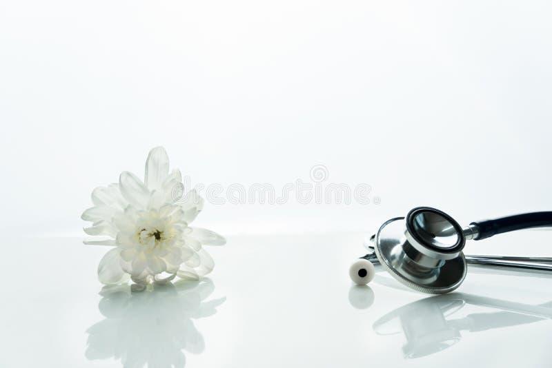 医生健康的听诊器在医院或诊所的诊断有白色自然花干净的背景 库存图片