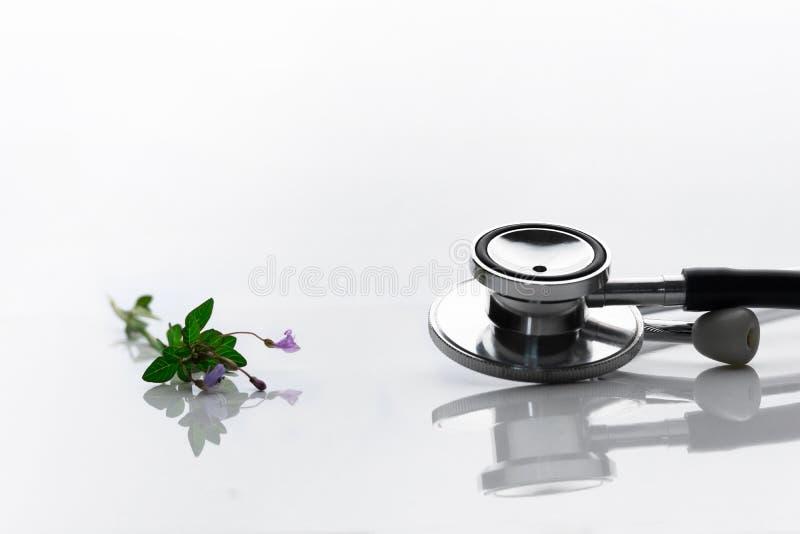 医生健康诊断的金属听诊器与野生草本植物花供选择的疗法的在白色背景 库存图片
