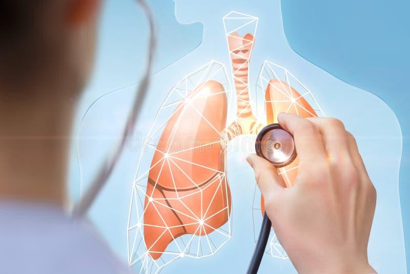 医生听人的肺模型  免版税库存照片