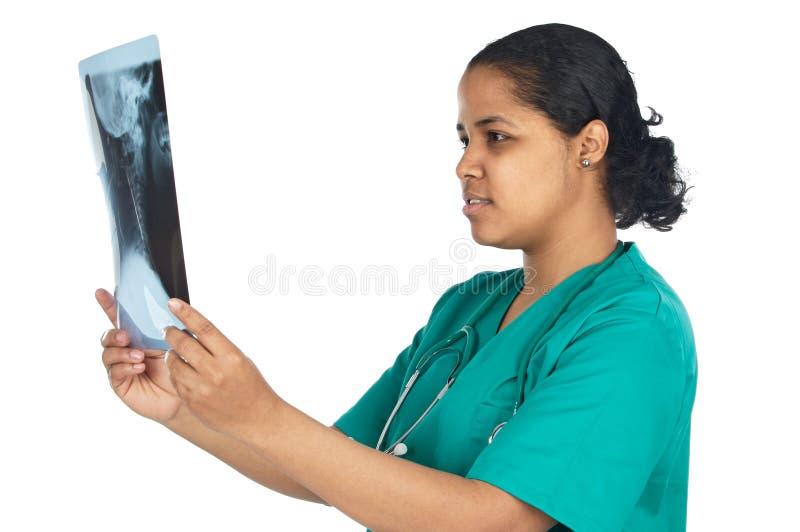 医生检查的射线照相 免版税图库摄影