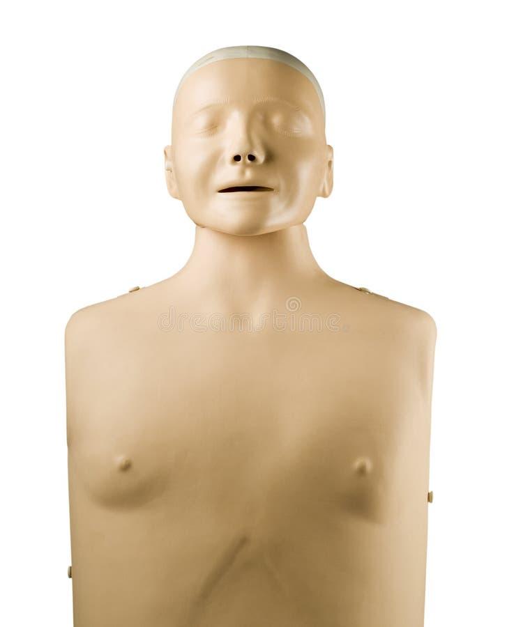 医疗帮助虚拟第一个的时装模特 库存照片