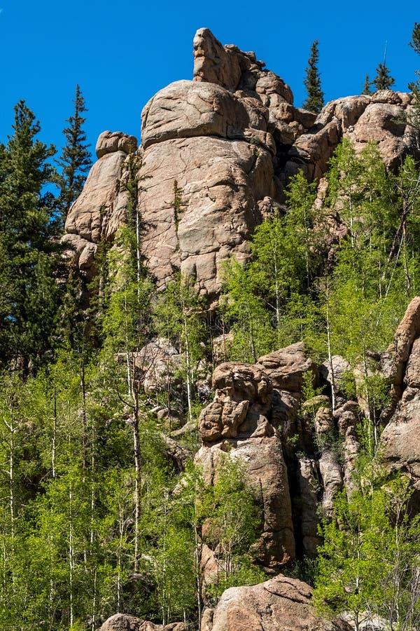 十一个英里峡谷科罗拉多风景 免版税图库摄影
