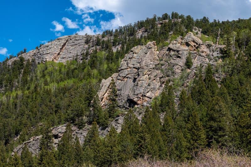 十一英里峡谷科罗拉多环境美化 免版税库存图片