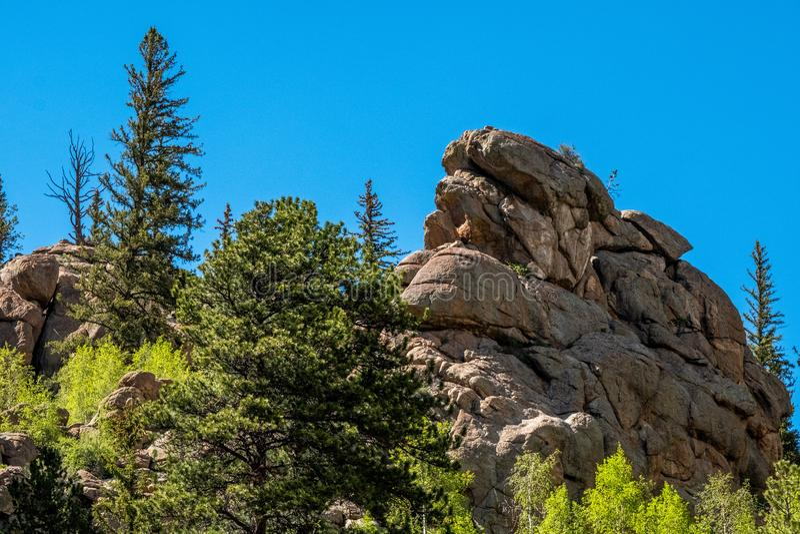 十一英里峡谷科罗拉多环境美化 库存图片