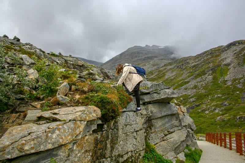 十几岁的女孩攀登岩石 免版税库存照片