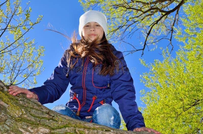 十几岁的女孩爬在绿色叶子中的一棵树 库存照片
