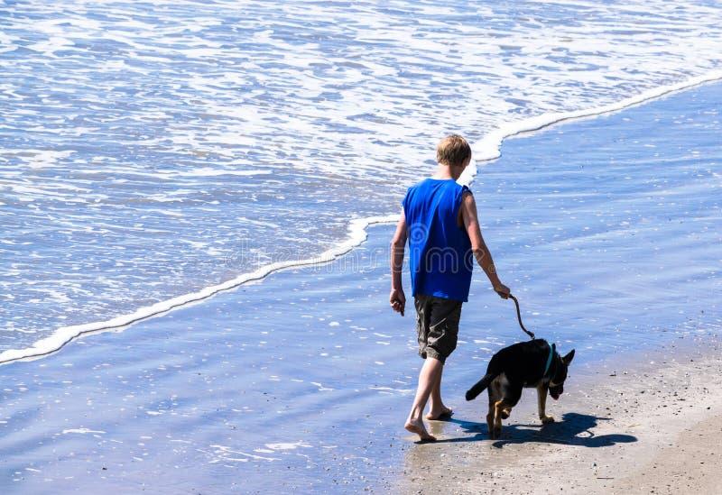 十几岁的男孩在海洋的边缘附近遛他的在海滩的狗 库存图片