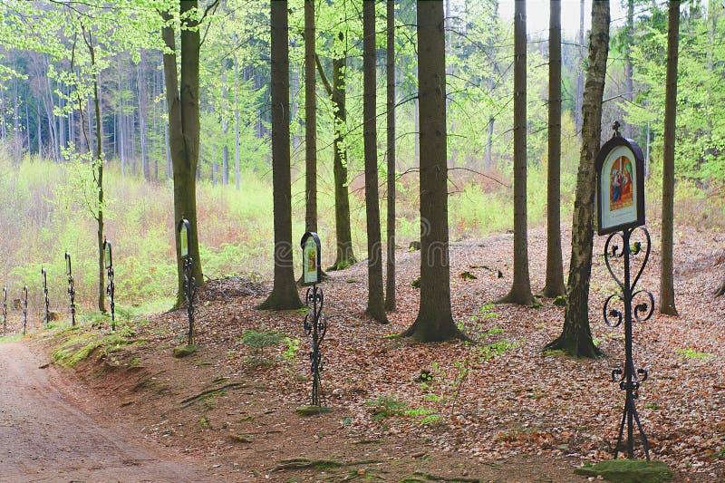 十字架的方式在森林里 免版税库存照片