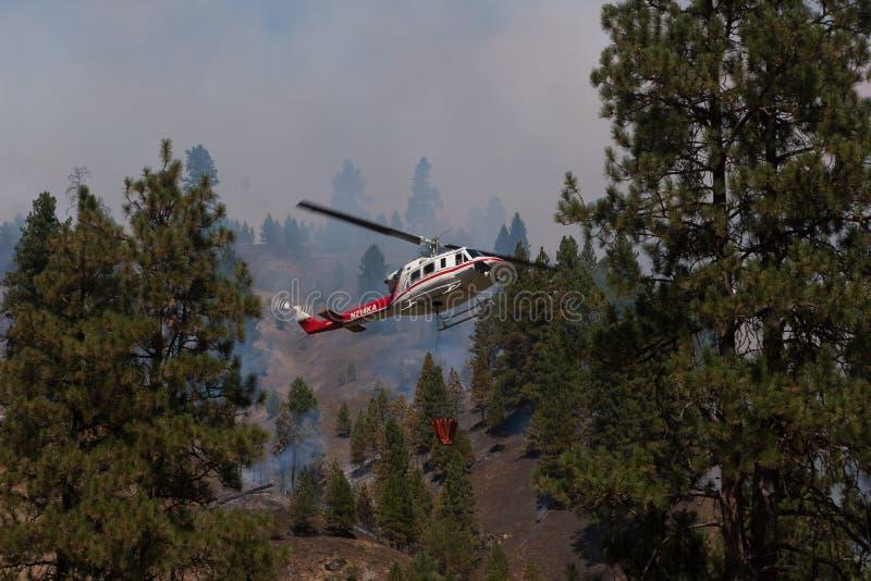 直升机战斗的森林火灾 库存照片
