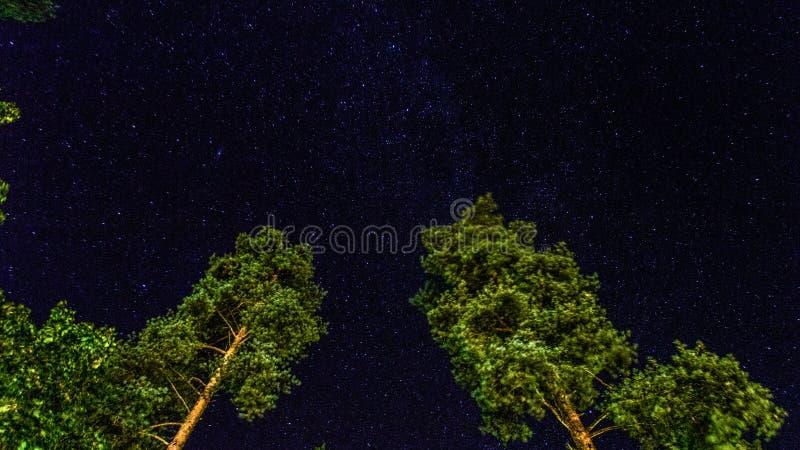 午夜天空 库存图片