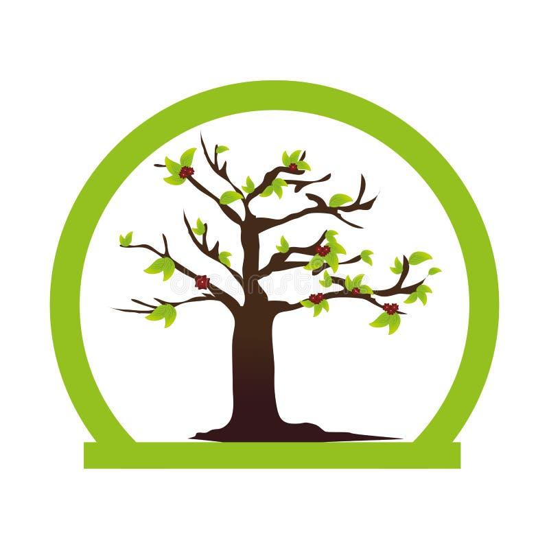 半圆边界五颜六色与叶茂盛树植物 库存例证
