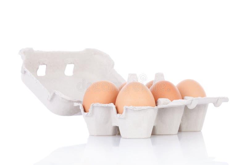 半棕色鸡十二的鸡蛋 库存照片