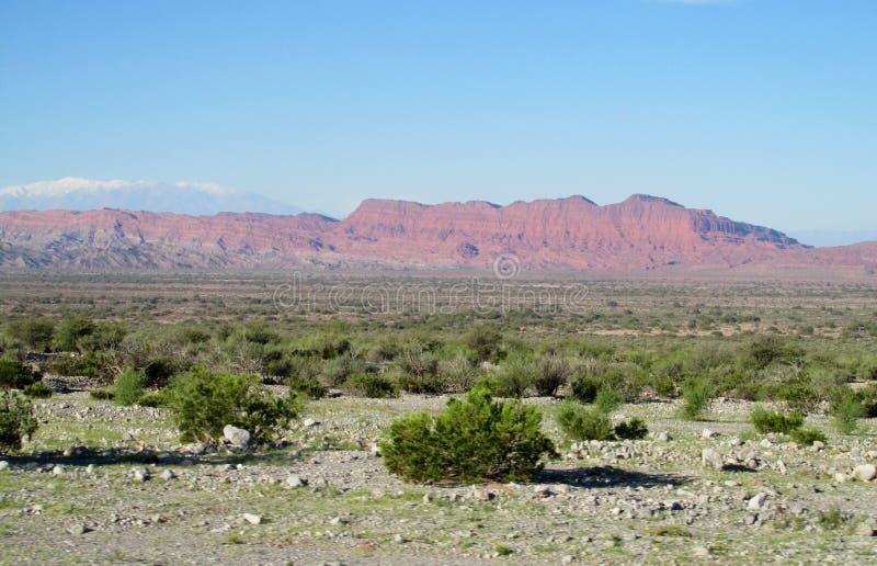 半沙漠山风景 库存照片