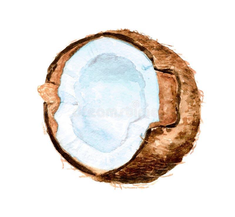 半的椰子 库存例证
