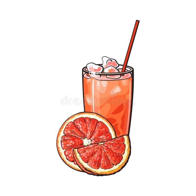 半的葡萄柚,切片、杯与冰的汁液和秸杆 向量例证