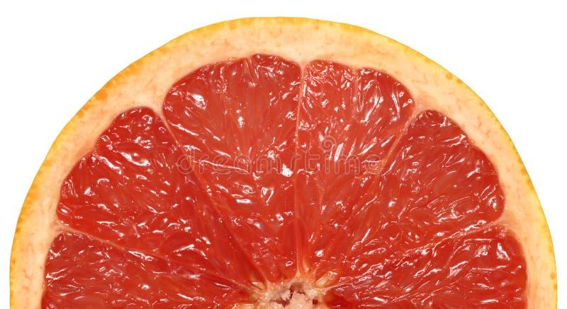 半的葡萄柚 库存照片