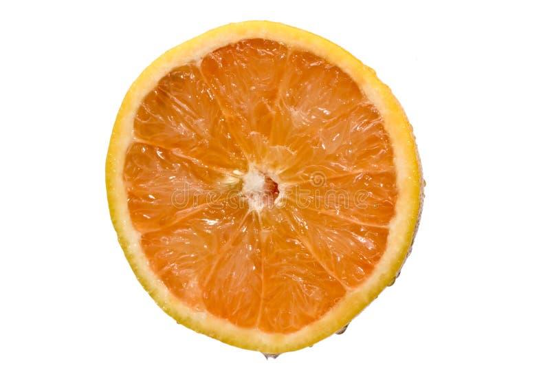 半的葡萄柚 库存图片