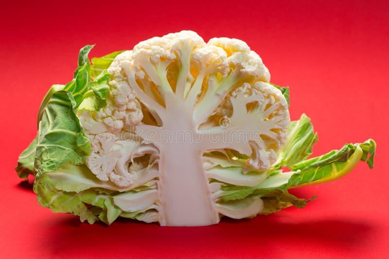 半花椰菜 库存图片