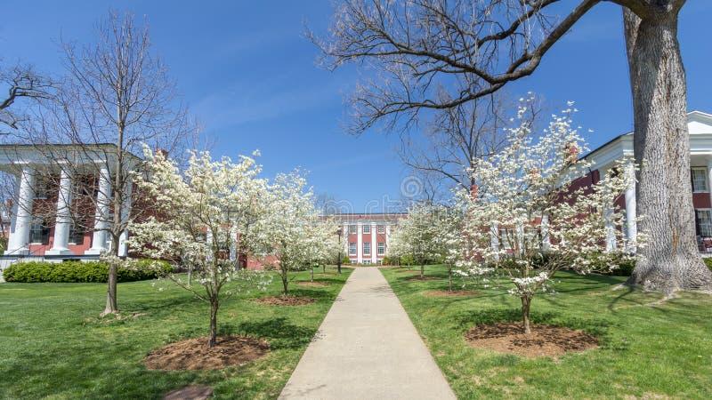 华盛顿与李大学的亨特利霍尔 免版税库存照片