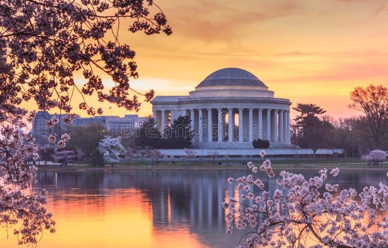华盛顿特区樱花节日日出 库存图片