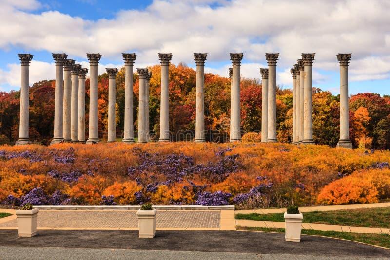 华盛顿特区首都专栏在秋天 免版税库存图片