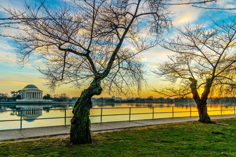 华盛顿特区,在潮水坞和杰斐逊纪念品的 免版税库存图片