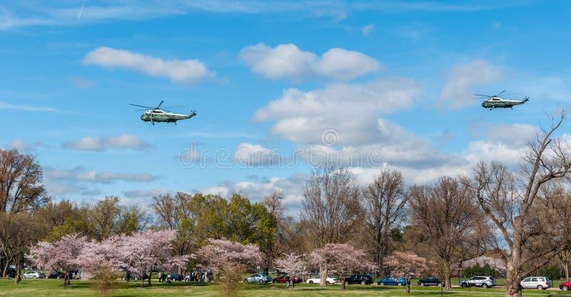 华盛顿特区:2017年4月1日:美国海军陆战队员一Helicopte 图库摄影