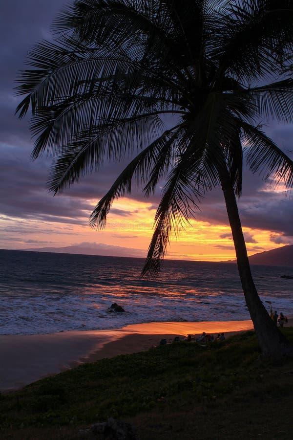 华美的夏威夷日落在毛伊 免版税库存图片