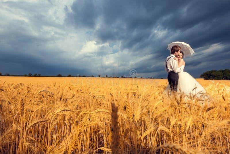 华美的新娘和新郎在麦田与蓝天在bac中 免版税库存照片