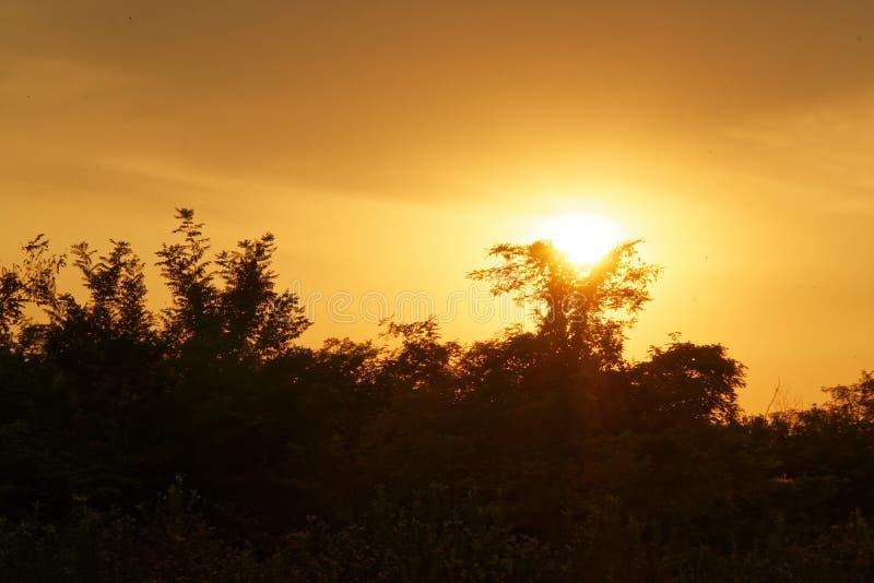 华美的日出在非洲,徒步旅行队,埃塞俄比亚 库存照片