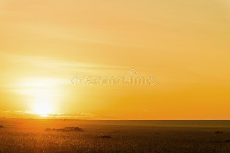 华美的日出在非洲,徒步旅行队 免版税库存照片