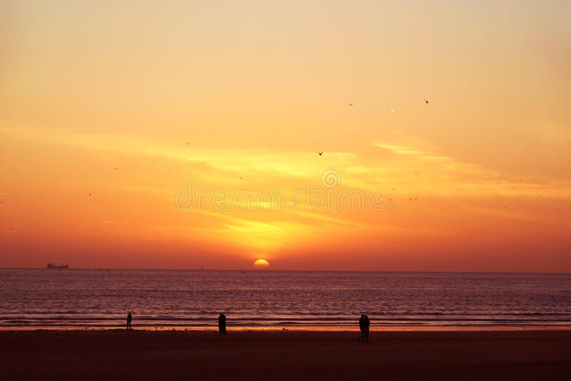 华美的日落有看法向海 库存图片